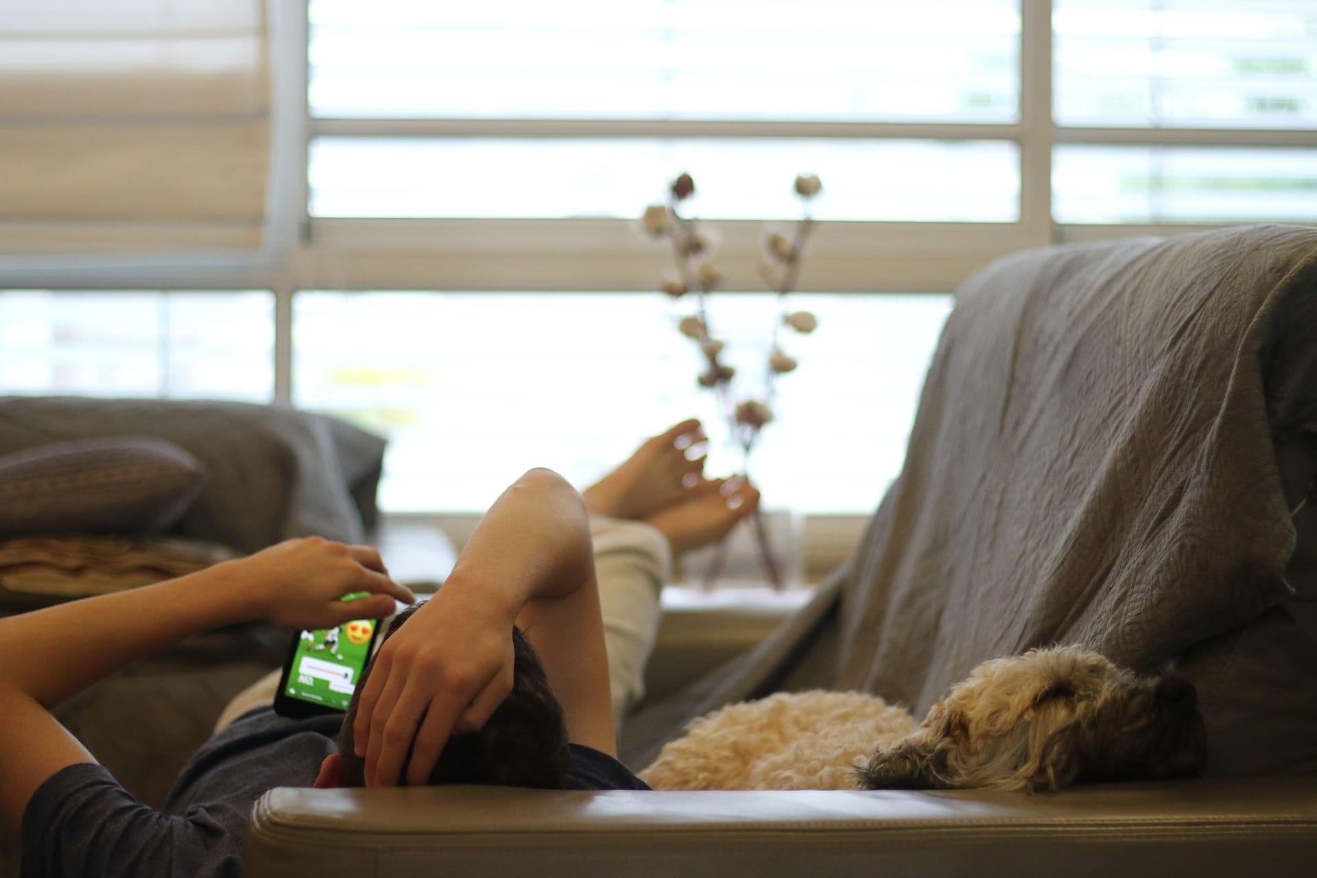 cane e padrone in relax sul divano
